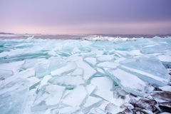 Pieces of shelf ice on frozen Ijsselmeer lake Royalty Free Stock Photo