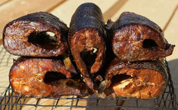 Pieces of smoked fish Stock Images
