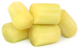 Pieces of sugarcane Royalty Free Stock Photo