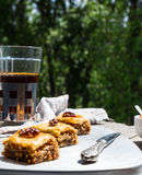 Pieces of sweet baklava, garden background, selective focus Royalty Free Stock Image