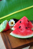 Pieces of Sweet Watermelon royalty free stock image