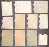 Pieces of torn brown lined and squared note paper Royalty Free Stock Photography