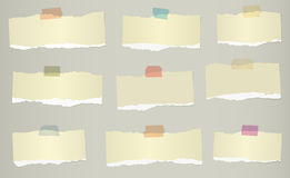 Pieces of torn green blank note paper on gray background Stock Photos