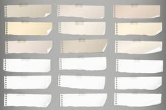 Pieces of torn white, brown blank note paper with adhesive tape Royalty Free Stock Photography
