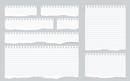 Pieces of torn white lined notebook paper on gray background stock illustration