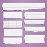 Pieces of torn white lined, squared blank notebook paper sticked on light purple background Royalty Free Stock Photos