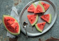 Pieces of watermelon. On a metal tray Stock Image