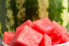 Pieces watermelon in plate Royalty Free Stock Image