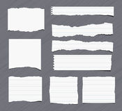 Pieces of white torn note, notebook, copy book paper sheets stuck on grey background.  Stock Images