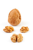 Pieces and whole walnut Royalty Free Stock Images