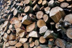 Pieces of wood Stock Image