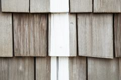 Pieces of wooden plank wall for texture background with white line. Pieces of wooden plank wall texture background with white line royalty free stock images