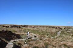 Piechur na moorland sekci wybrzeże Sunąć spacer zdjęcie royalty free