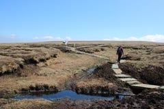 Piechur na moorland sekci wybrzeże Sunąć spacer obrazy royalty free