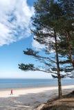 Piechur przy morzem obrazy stock