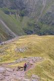 Piechur z czerwonego plecaka grani malejącym śladem w Szkockim Hig Obraz Royalty Free