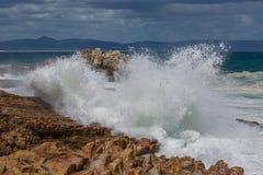 Piechur zatoka przy Hermanus, Południowa Afryka Fotografia Stock