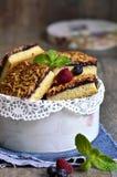 Piecies of cake with berry jam. Stock Image