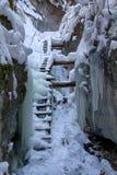 Piecky nell'inverno nel parco nazionale slovacco di paradiso, Slovacchia Fotografia Stock Libera da Diritti