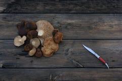pieczarka i nóż w stole Zdjęcia Stock