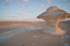 Pieczarka w białej pustyni Zdjęcie Royalty Free