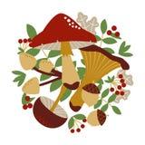 Pieczarki, jagody i liście, ilustracji