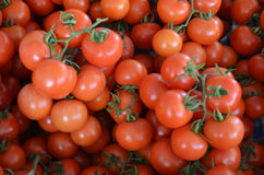 Pieczarki na górze czerwonych czereśniowych pomidorów z ogonem na kramu w bazaru Antalya indyku Obraz Stock
