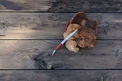 pieczarki na rocznika drewnie Zdjęcia Stock