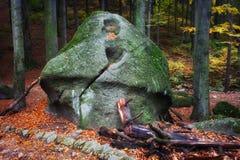Pieczarkowa skała w lesie Zdjęcie Royalty Free