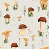 Pieczarkowy bezszwowy wzór z jesieni lasowymi dzikimi pieczarkami ziele i ilustracja wektor
