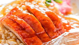 Pieczona kaczka nad ryż Fotografia Stock