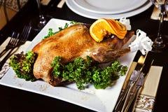Pieczona kaczka słuzyć na talerzu Fotografia Stock