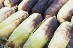 Pieczona kukurudza Fotografia Stock