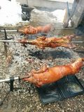 pieczone mięso Obraz Royalty Free