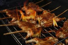 Pieczony kurczak na grillu Zdjęcia Royalty Free