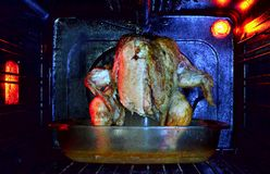 Pieczony kurczak w piekarniku obraz stock