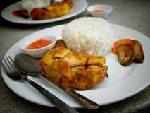 Pieczonych kurczaków ryż Obrazy Royalty Free