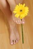 Pied avec la fleur Photographie stock libre de droits