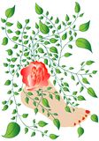 Pied avec la fleur et les lames Images libres de droits