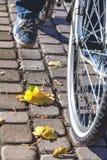 Pied dans des espadrilles sur le pont d'automne de pédale de bicyclette Images stock