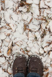 Pied dans la neige Images stock