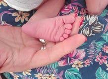 Pied de bébé d'isolement sur la main de parent Photographie stock