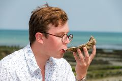 Pied de cheval. Young man enjoys the taste of a rare big oyster called a pied de cheval horse`s hoof at the french coast of Brittany Bretagne in Cancale, France Stock Images