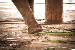 Pied de l'éléphant s attaché à une chaîne Photo stock