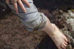 Pied et jambe du ` s de garçon humides tout en jouant près des piscines de marée Images stock