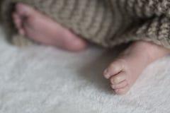 Piede appena nato del bambino Fotografia Stock Libera da Diritti