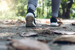 Piede con la scarpa che cammina al parco fotografia stock