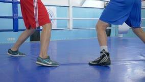 Piede dei pugili sull'anello durante il pugilato d'allenamento al centro sportivo, primo piano stock footage