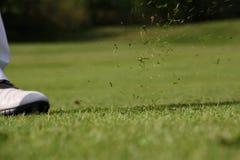 Piede del giocatore di golf su verde Fotografia Stock