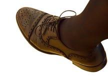 Piede del ` s della donna in scarpe marroni su un fondo bianco Immagine Stock